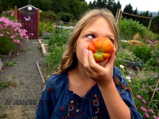 Tomato garden girl child