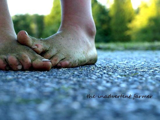 Grassy feet girl summer green toes