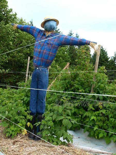 Scarecrow boots blue large garden homemade