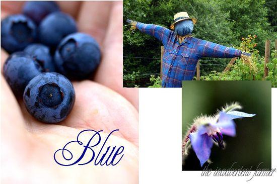 Blue garden collage