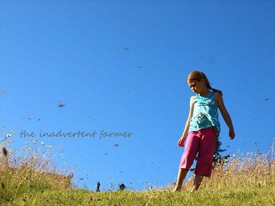 Girl blue sky field summer bees