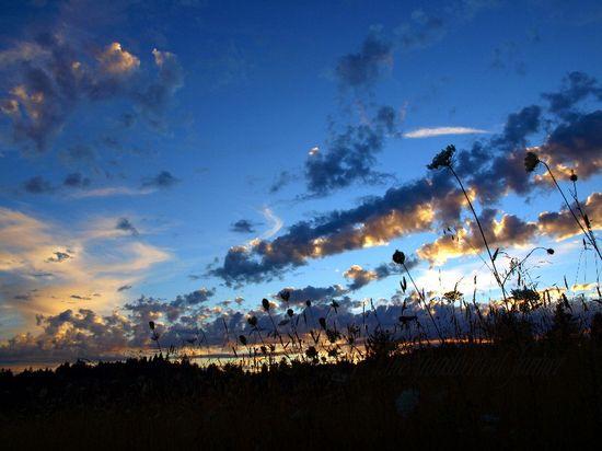Sunset summer blue pink clouds