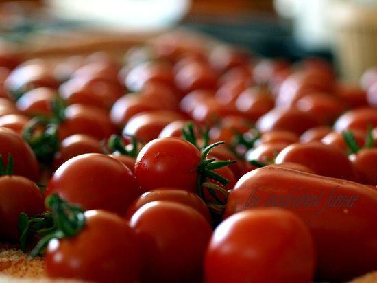 Tomatoes fresh red garden